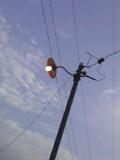 青空に裸電球
